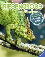 RIESENGROSS und klitzeklein - Tiere des Regenwaldes in Originalgröße