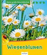 Meine große Naturbibliothek: Wiesenblumen