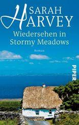Wiedersehen in Stormy Meadows: Roman