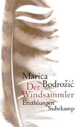 Der Windsammler