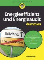 Energieeffizienz und Energieaudit für Dummies
