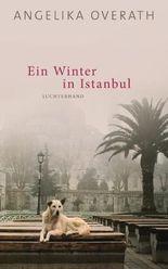 Ein Winter in Istanbul