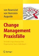 Change Management Praxisfalle
