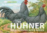 Postkartenbuch Hühner