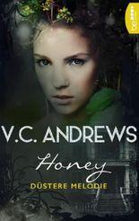 Honey: Düstere Melodie (Shooting Stars 4)