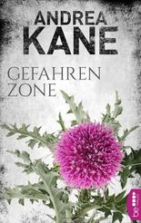 Gefahrenzone (Romantic Thriller der Bestseller-Autorin Andrea Kane)