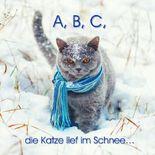 A, B, C, die Katze lief im Schnee