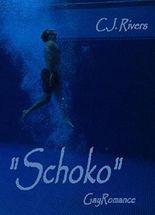 Schoko: Gay Romance