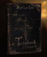Tagebuch der Erdsängerin