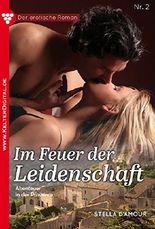 Der erotische Roman 2 - Erotikroman: Im Feuer der Leidenschaft (Ein erotischer Roman)