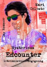 Mysterious Encounter