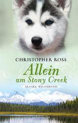 Alaska Wilderness - Allein am Stony Creek