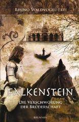 Falkenstein 02
