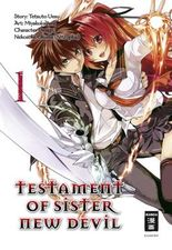Testament of Sister New Devil 01