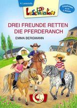 Lesepiraten – Drei Freunde retten die Pferderanch