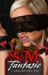 S/M Fantasie: 15 schmerzhaft schöne Storys