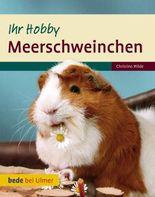 Meerschweinchen Ihr Hobby