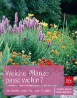 Welche Pflanze passt wohin?: Die besten Arten für den Garten