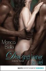 Drei sind keiner zu viel: Erotischer Roman