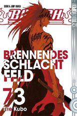 Bleach 73