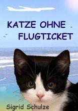 Katze ohne Flugticket