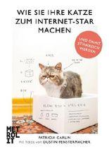 Wie Sie Ihre Katze zum Internet-Star machen