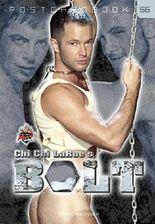 Bolt (Postcardbook)