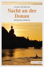 Nacht an der Donau
