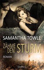 Zähme den Sturm (The Storm 3) (German Edition)