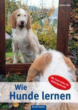 Wie Hunde lernen