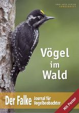 Vögel im Wald