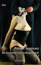 Private Secretary Teil 3