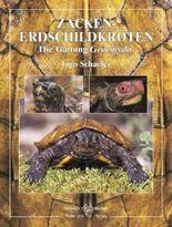 Zackenerdschildkröte: Die Gattung Geoemyda (Terrarien-Bibliothek)