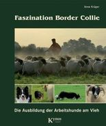 Faszination Border Collie