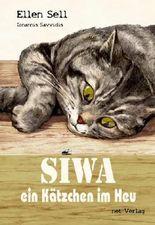 SIWA - ein Kätzchen im Heu