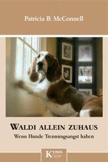 Waldi allein zuhaus: Wenn Hunde Trennungsangst haben