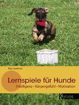 Lernspiele für Hunde