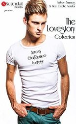 The Lovestory Collection: Jeremy / GayRomeo / Fantasy - Der Mann meiner Träume