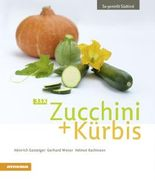 33 x Zucchini + Kürbis