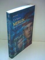 T. A. Barron: Merlin und der Zauberspiegel [paperback]