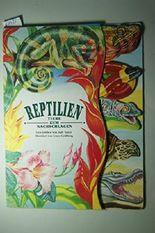 Reptilien - Tiere zum Nachschlagen