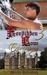 Forbidden Love 3: Erpressung (German Edition)