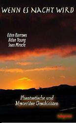 Wenn es Nacht wird: Phantastische und mysteriöse Geschichten und Gedichte