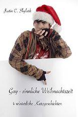 Gay - sinnliche Weihnachtszeit: 4 winterliche Kurzgeschichten