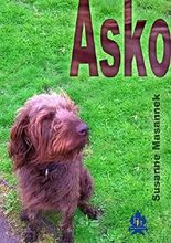 Asko: Omnas oder der Junge, der durch die Tür ging
