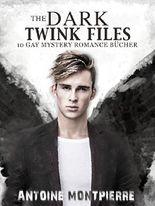 The Dark Twink Files: 10 Gay Mystery Romance Bücher