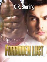 Forbidden Lust (Verbotene Lust): Eine Gay-Romance in Nigeria (Novelle)