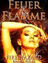 Feuer und Flamme: Teil II der Fire Hazard-Trilogie