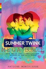 Summer Twink MEGA Bundle [Gay Romance]: Die Mega Gay Compilation