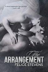The Arrangement: Gay Contemporary Romance
